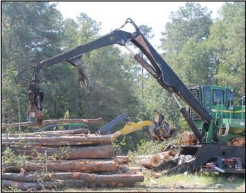 Site Work for New Elementary   School Begins