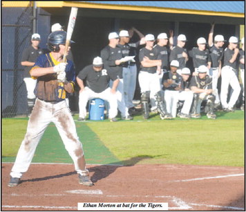 Troup Baseball Shines in State-Tournament Opener