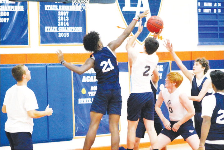 A Bounce Back Season is  Possible for Warrior Boys Basketball